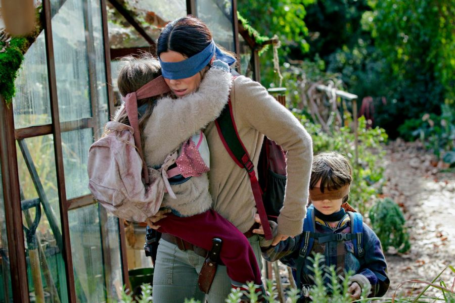 You Can Take Your Blindfold Off For This One- Bird Box Review
